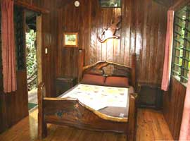 Self contained Daintree accommodation in the rain forest