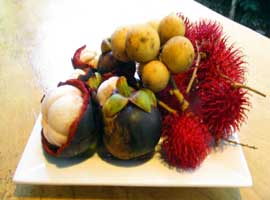 Exotic fruit tasting tour in Cape Tribulation