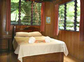 bed and breakfast in the daintree