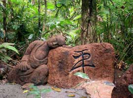 buddha statue on the Daintree sculpture trail