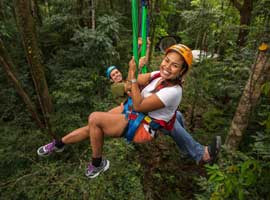 Tours and activities in the Daintree